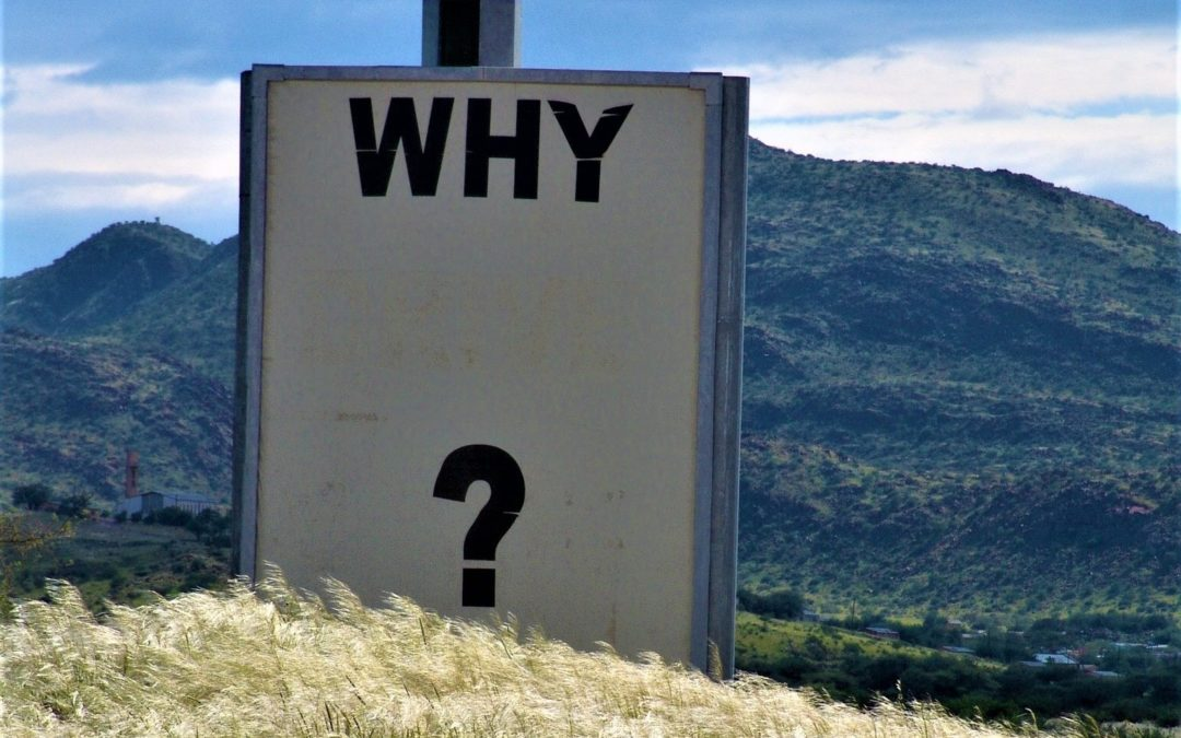 Questions and not answers make phenomenal leaders