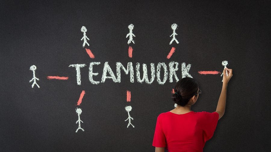 What makes up a high-performing team?